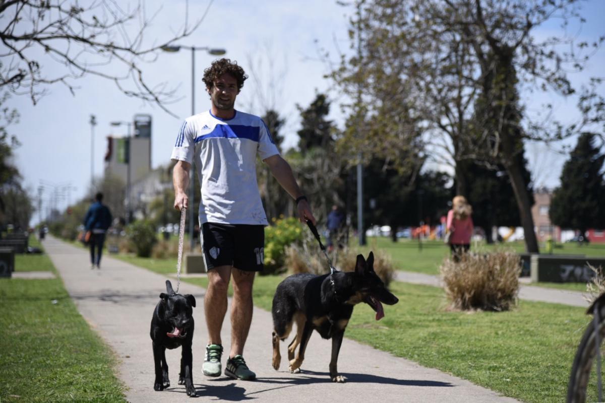 En La Plata testean a las mascotas de pacientes con coronavirus