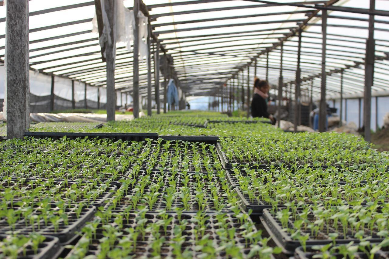 Se lanza el programa de impulso a la agroecología
