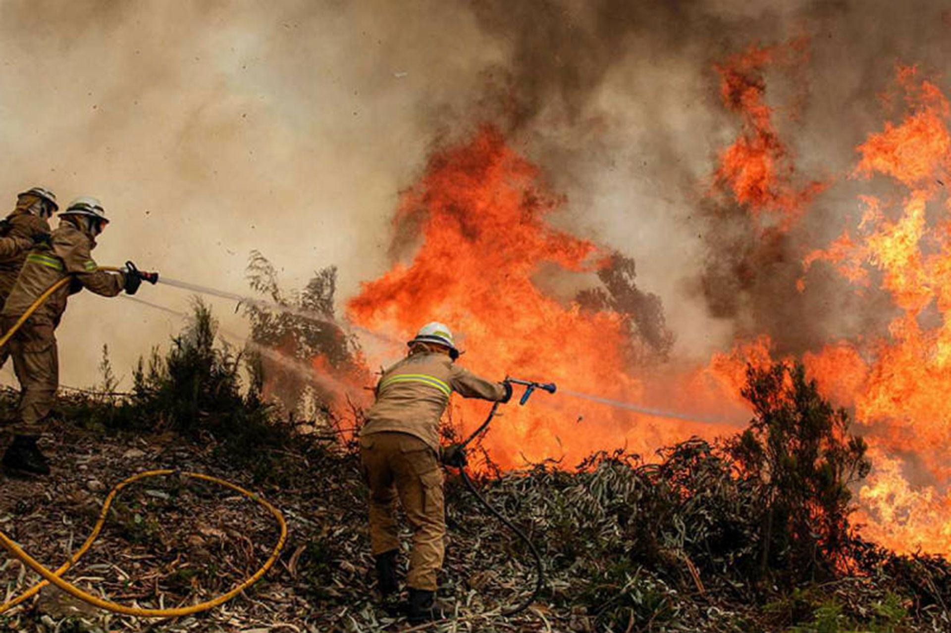 En once horas se detectaron en Chaco 910 focos de incendio
