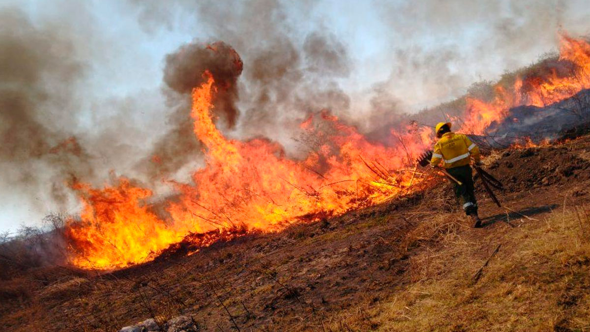 18.000 hectáreas de superficie quemada en Jujuy