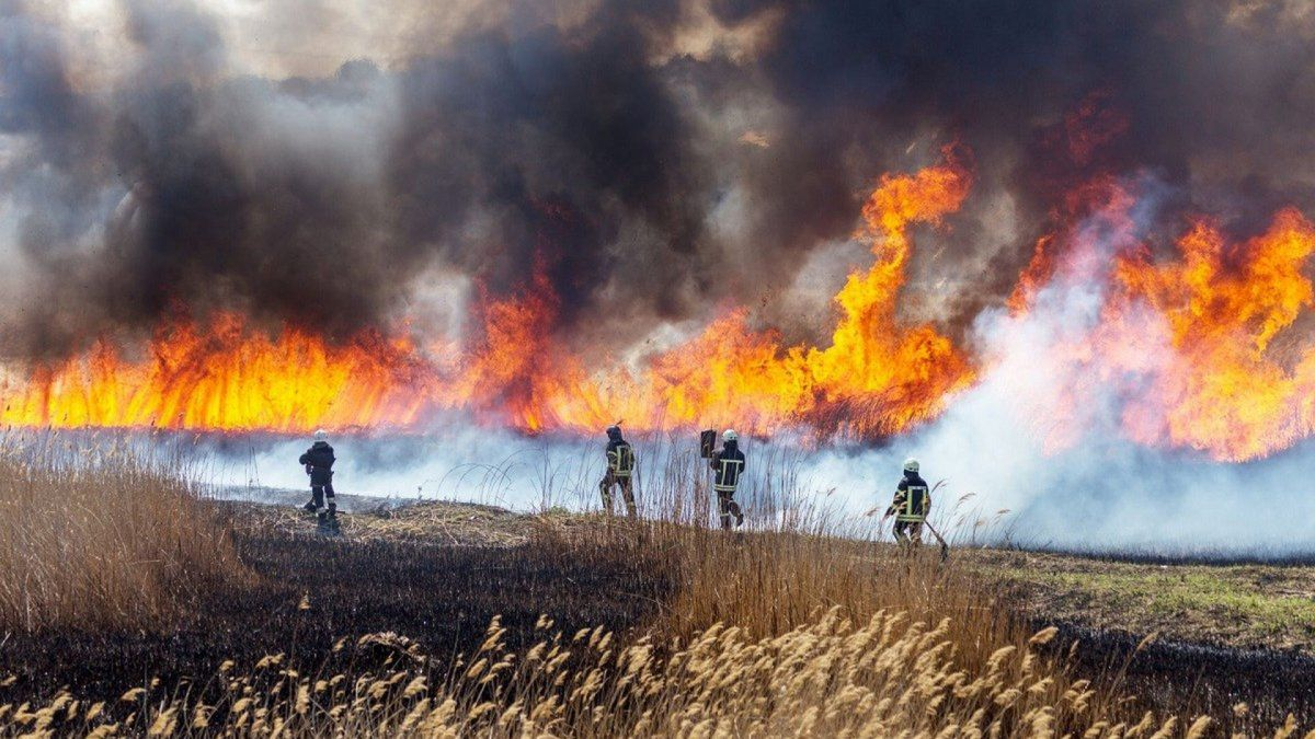 Jujuy continúa siendo la provincia más afectada por los incendios forestales