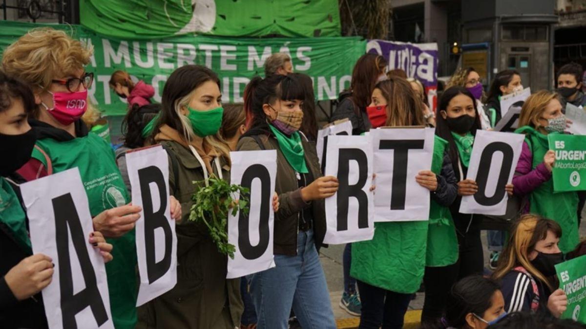 Ibarra pidió que el debate sobre aborto sea «respetuoso»
