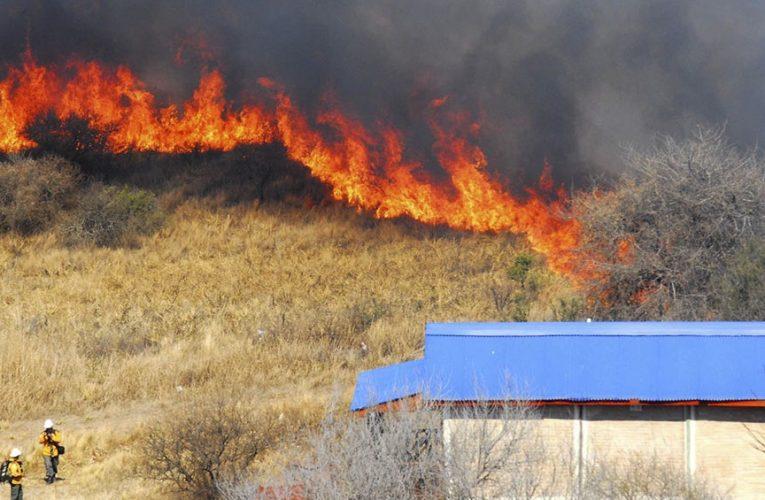 Advierten que es «muy grave» el daño por los incendios de bosque nativo y exótico en El Bolsón