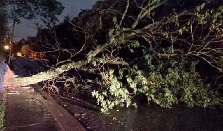 Temporal de viento y lluvia afectó a Posadas y centro de Misiones