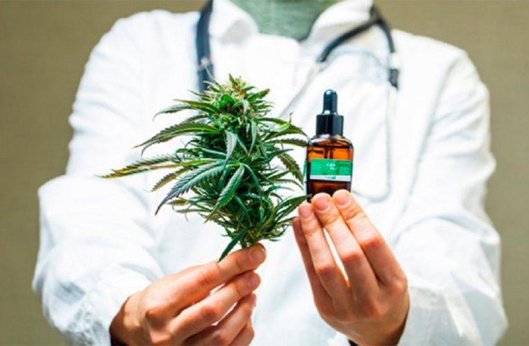 Gobierno bonaerense presentó a legisladores proyecto para regular el uso medicinal de cannabis