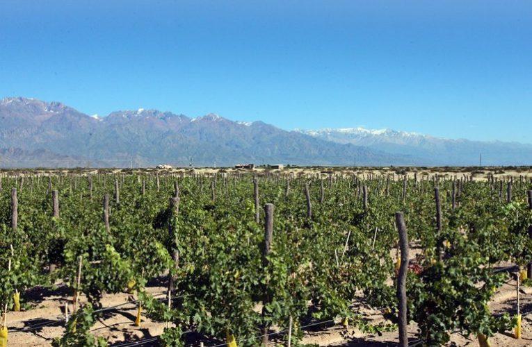 La revista Time eligió a Mendoza como uno de los 100 mejores destinos en el mundo
