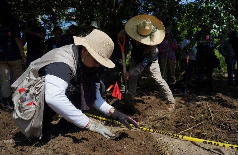 Fosas clandestinas en México: encontraron 82 restos humanos